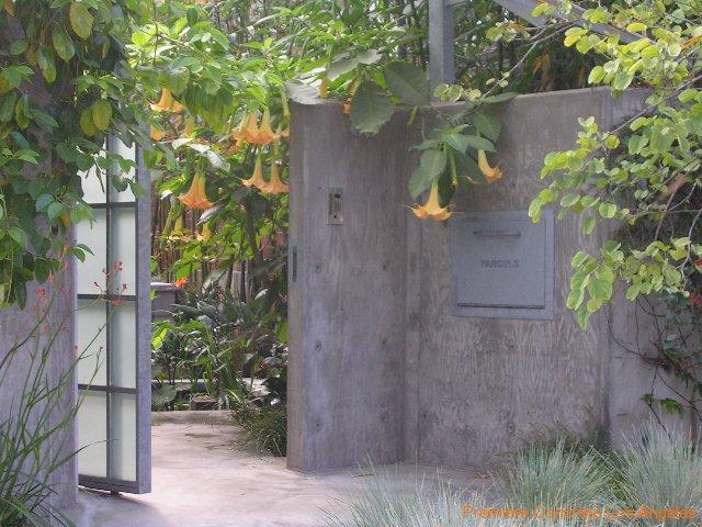 Los Angeles Concrete Walls-64